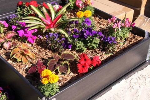 wpc raised garden bed
