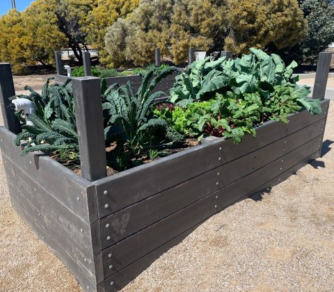 Garden Bed with Posts